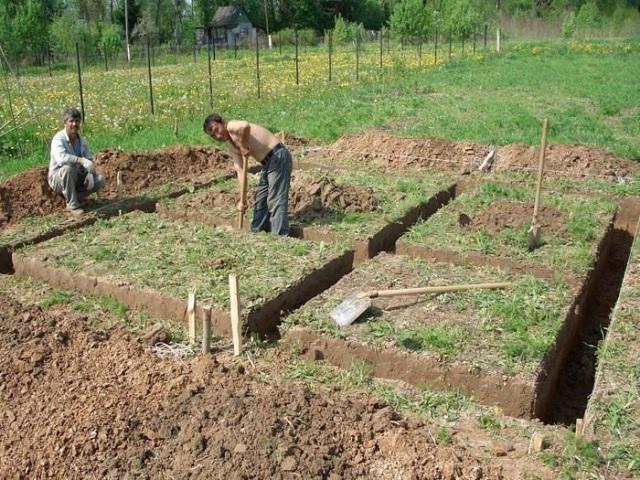 Прежде чем приступать к работе, узнайте какие почвы в вашем районе