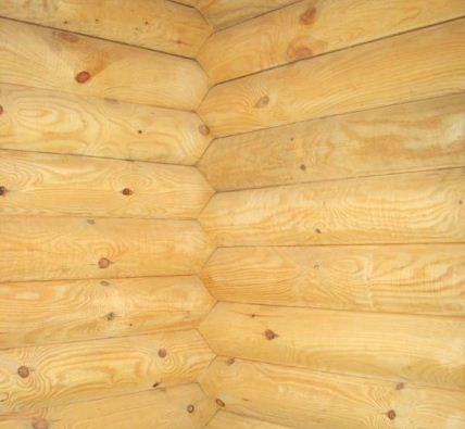 Стены бани из бревна